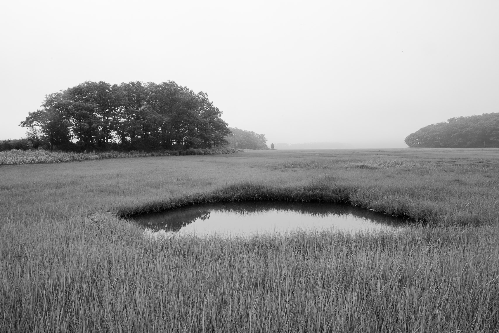 PoolandShadow_GreatMarsh_Ipswich_MA_6-13